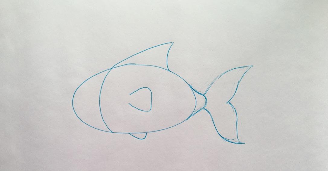 draw fins