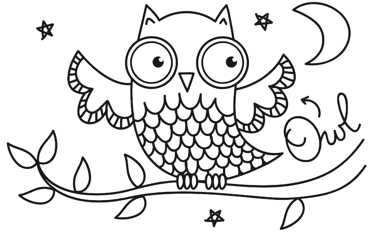 nocturnal animals coloring pages - photo#21