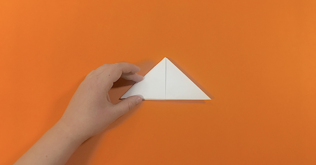 fold the bottom point up to the top point