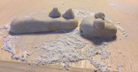 Lizard in flour
