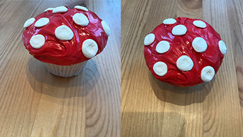 Finished toadstool cupcake with marshmallows