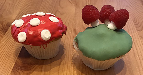 Easy and beautiful toadstool cake and cupcakes | toucanBox
